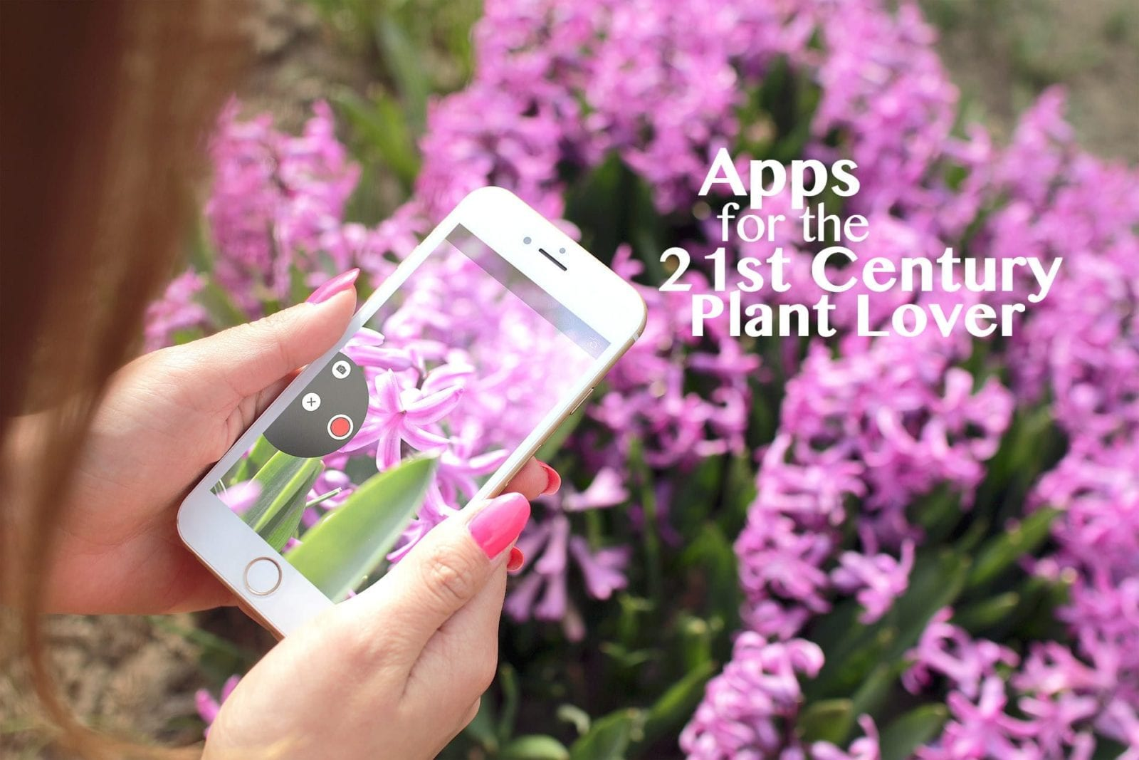 Apps for the 21st Century Plant Lover | The Cutting Edge ...